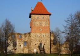 Castle in Chudów