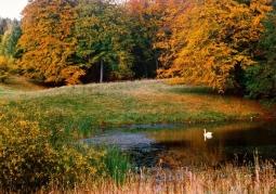 Iński Landscape Park