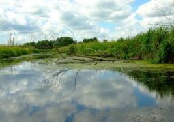 Cedynia Landscape Park