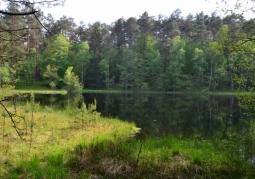 Drawieńskie National Park lakes