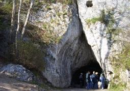 Bat Cave - Dolinki Krakowskie Landscape Park