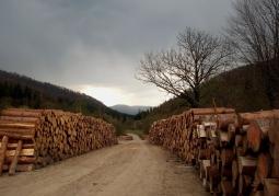 Ciśniańsko-Wetliński Landscape Park